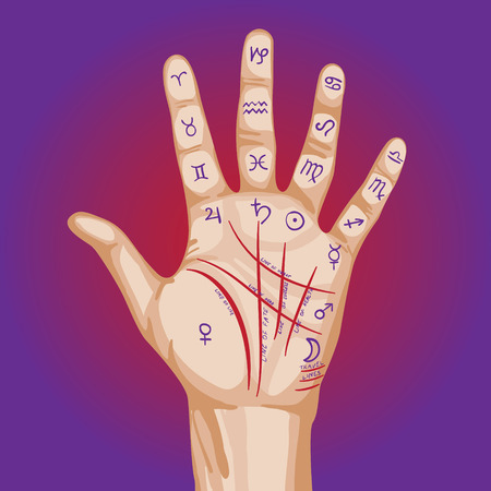 astrologer: Palmistry map on open palm. vector illustration.