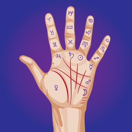 augury: Palmistry map on open palm. vector illustration.
