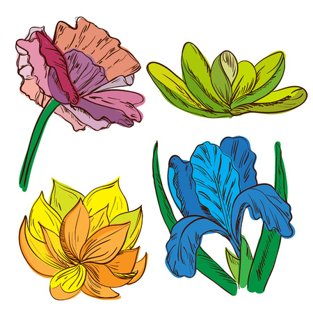 Set of hand painted sketch flowers. Vector illustration.