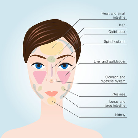 Acupuncture points on face. Vector illustration Vettoriali