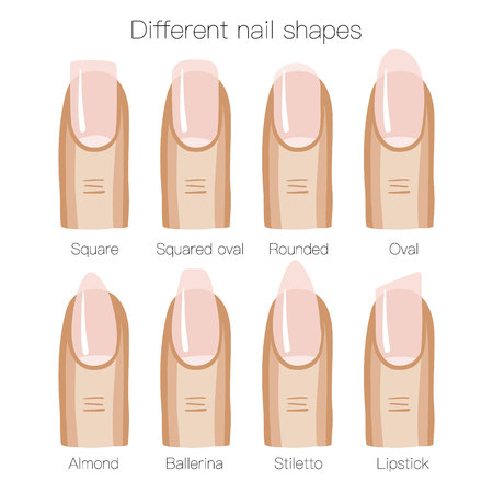 smoothness: Set of different shapes of nails. Vector illustration
