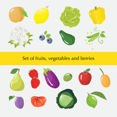 Set of different fruits, vegetables and berries. Vector illustration Illustration