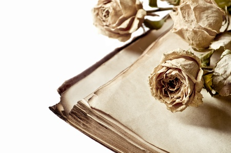 Dry roses and old book isolated on white background
