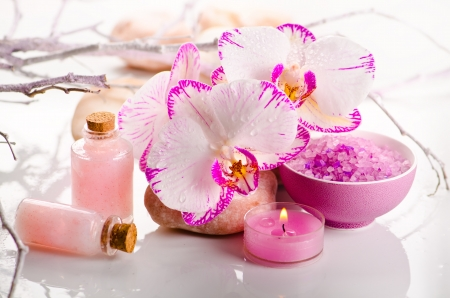 Spa still life with pink orchid flowers
