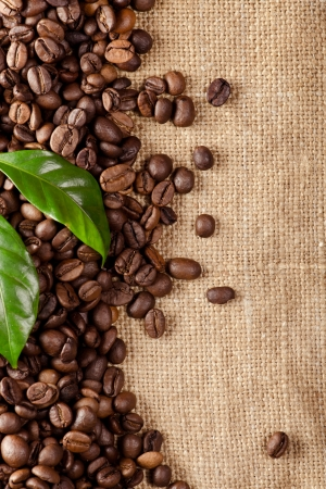 Coffee beans on sacking background photo