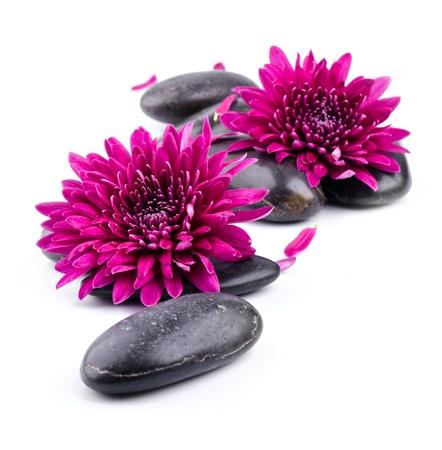 zen stones: Spa