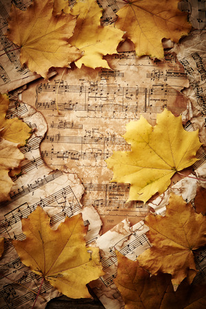 Autumn leaves on vintage paper background photo
