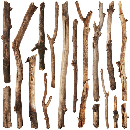 Tree branches set isolated on white background Banque d'images