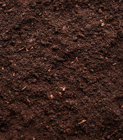 Soil background Foto de archivo