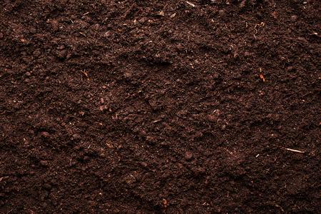 Soil background Imagens