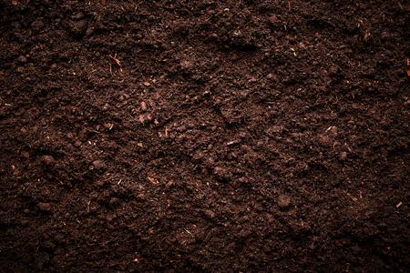 Soil texture Фото со стока - 45819491