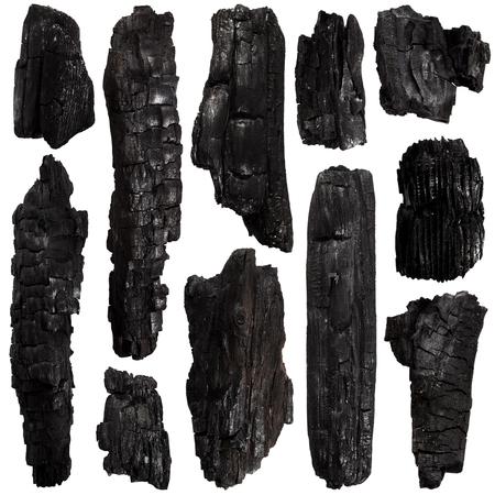 ash tree: Set of Burnt bark tree isolated on white background