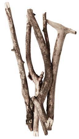 wooden stick: Sticks Stock Photo