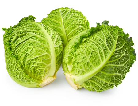 the cabbage: Savoy cabbage isolated on white background