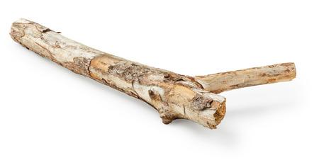 Branche d'arbre isolé sur fond blanc Banque d'images - 57233625