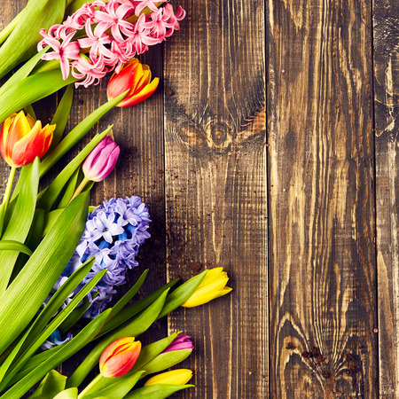 hyacinths: Beautiful tulips and hyacinths on wooden background