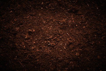 soil texture: Soil texture