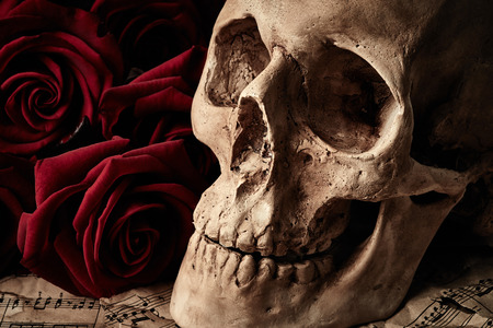 corpse flower: Skull and bouquet of red roses on music sheets background Stock Photo