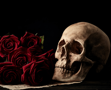 Human skull with red roses on dark background