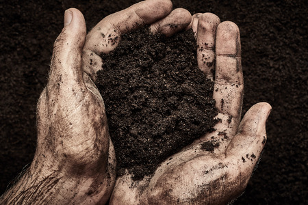 handbreadth: Soil in male hands