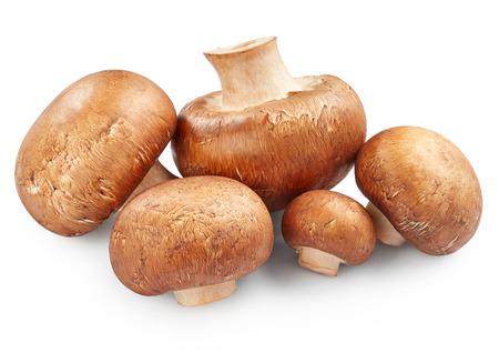Mushrooms isolated on white background Stock Photo