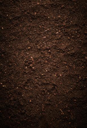 dirt: Dirt texture