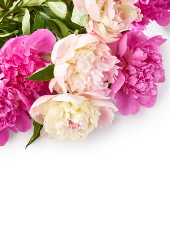Bouquet of peony flowers over white background with place for text