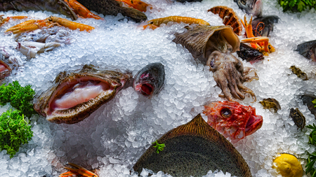 Fresh different fish on ice in a supermarket. Fresh fish in a fish shop Stock Photo