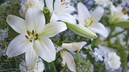 Gorgeous bouquet of white lilies and carnations flowers 스톡 콘텐츠