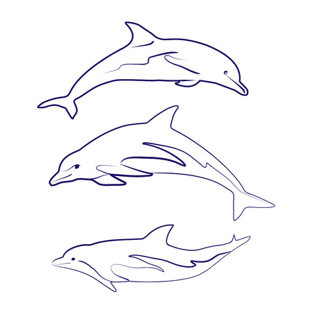dolphin silhouettes drawn Vector