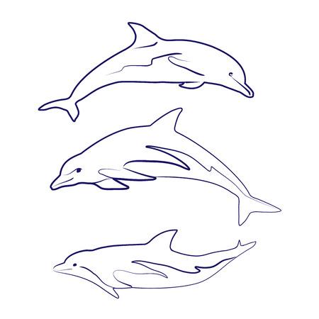 dorsal: dolphin silhouettes drawn