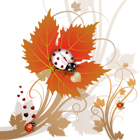 Vector illustration of a ladybug on leaf Stock Vector - 8457411
