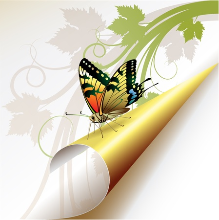 Curled corner with butterfly Vector
