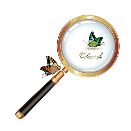 Magnifying glass and butterfly isolated on white background, vector object Stock Vector - 8803922