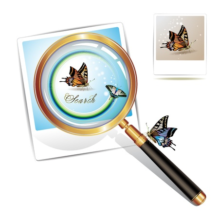 Magnifying glass over a photo with butterfly isolated on white background Vector