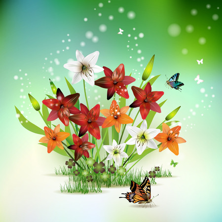 Flowers in the grass and butterflies, lilies of different colors Stock Vector - 9100424
