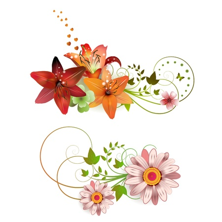 Flowers arrangement and butterflies, lilies of different colors  Vector