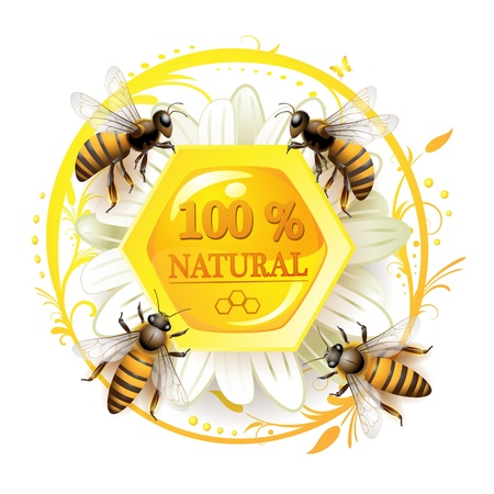 Bees and honeycombs over floral background isolated on white