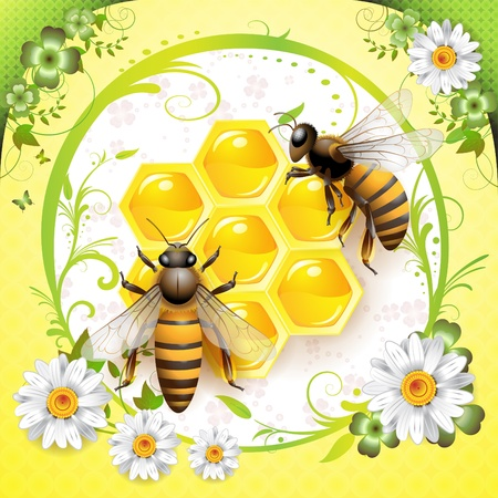 captivated: Two bees and honeycombs isolated over springtime background