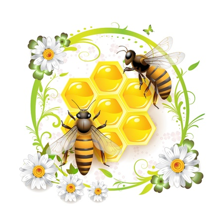 beehive: Two bees and honeycombs over floral background isolated on white  Illustration