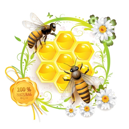 Two bees and honeycombs over floral background isolated on white