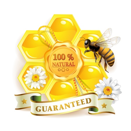 Bee with honeycombs and quality seal isolated on white  Stock Vector - 9321353