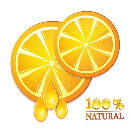 gastronomic: Slices orange with isolated on white background  Illustration