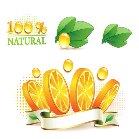 Slices orange with leaf isolated on white background  Stock Vector - 9508519