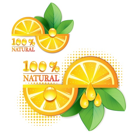 Slices orange with leaf isolated on white background Stock Vector - 9504736