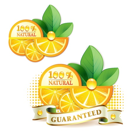 Slices orange with leaf isolated on white background  Stock Vector - 9504772