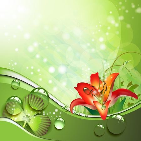 Lily and clover with drops of water over abstract green background Illustration
