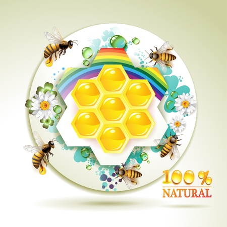captivated: Bees and honeycombs over floral background with rainbow and drops of water Illustration