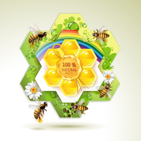 Bees and honeycombs over floral background with rainbow and drops of water  Vector