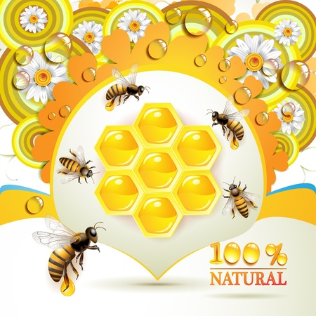 honey bee: Bees and honeycombs over floral background with drops